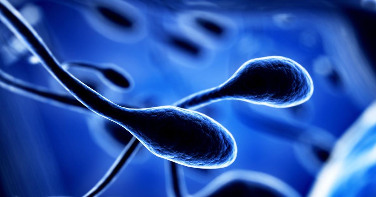 sperma probieren Eigenes