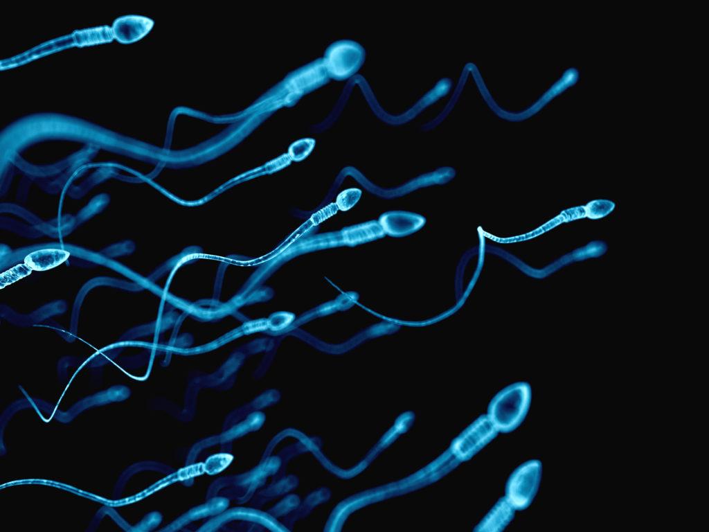 Eigenes sperma probieren