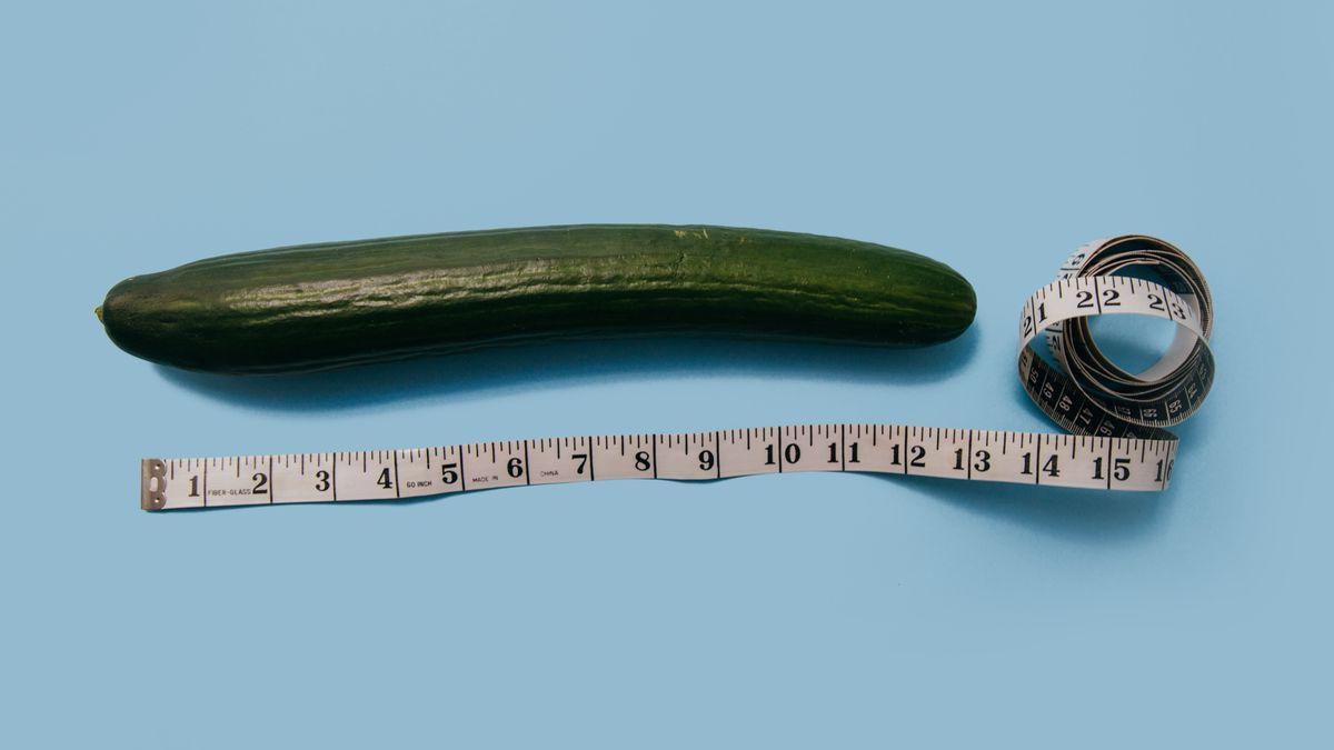 penis der welt Längste